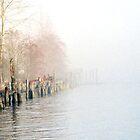 into the fog by ubumebme