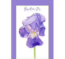 Purple Iris Mother's Day Photographic Print