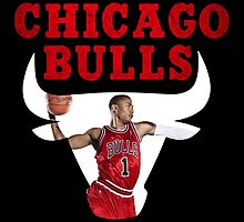 Chicago Bulls, Derrick Rose by ches98