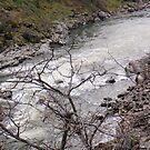 Upstream by heathernicole00