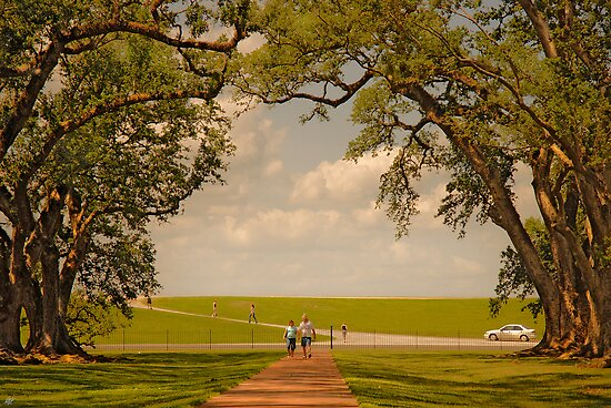Oak Alley Plantation by Paul Vanzella