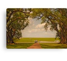 Oak Alley Plantation Canvas Print