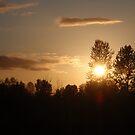 A Golden Sky by heathernicole00