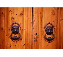 Lion Knockers Photographic Print