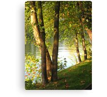 Looking Through Trees along The Seine Canvas Print