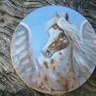 Appaloosa Pegasus by louisegreen