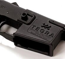 Light Weight Lower by Tegra Arms Arms