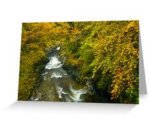 Automn Colours, Snowdonia Greeting Card