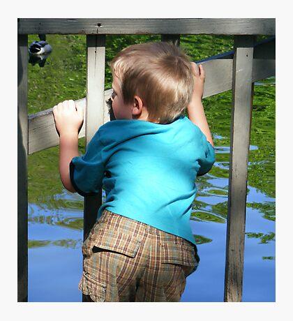 child watching ducks Photographic Print