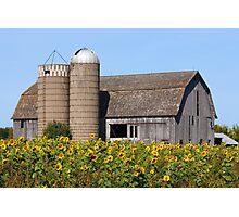 Sunflower Barn Photographic Print