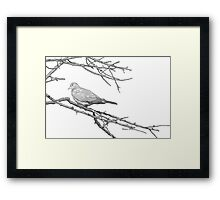 Why would you leave me...? Framed Print