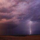 Springtime in Oklahoma by Dennis Jones - CameraView