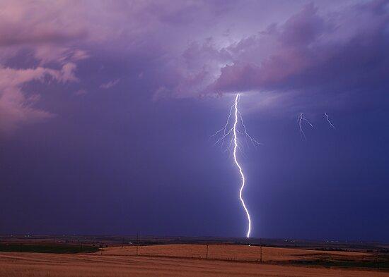 Springtime in Oklahoma #1 by Dennis Jones - CameraView