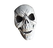 Skull Face Photographic Print