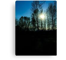 Sun through the trees Canvas Print