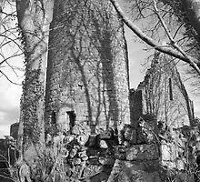 Dysert O Dea ruins (Clare) by John Quinn
