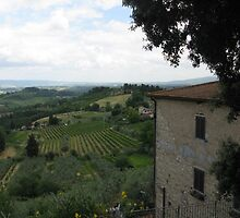 VIEW OF THE TUSCAN HILLS by kazaroodie