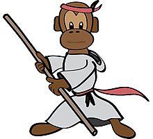 Martial Arts Monkey Photographic Print