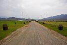Wine Barrels Lined Farm Lane by RatManDude