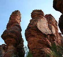Lost City Spires - Limmen National Park by Norman Mueller