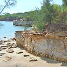 East Point, Darwin, Northern Territory, Australia by Adrian Paul
