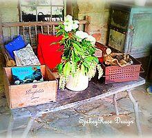 Lavendular Farm #1 Daylesford, Victoria, Australia by SpikeyRose
