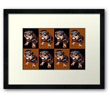 Rottweiler Pop Art Framed Print