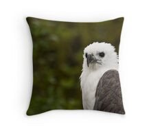 White-bellied sea eagle Throw Pillow