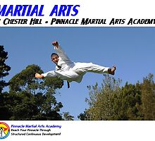 Martial Arts in Chester Hill - Pinnacle Martial Arts Academy by PinnacleMA