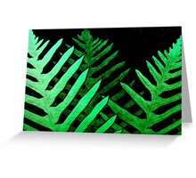stained ferns Greeting Card