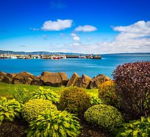 Digby Habour Seafront by mlphoto