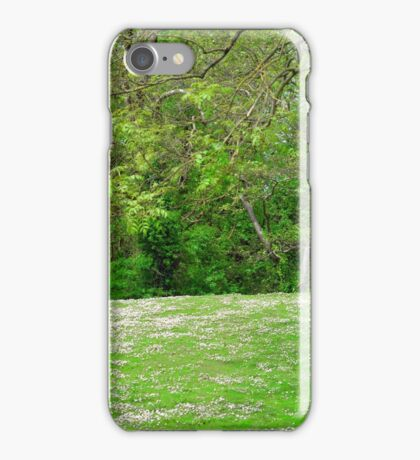 daisy hill woods iPhone Case/Skin