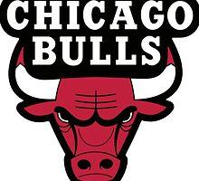 Chicago Bulls Logo by purplehayes