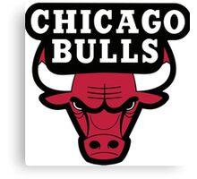 Chicago Bulls Logo Canvas Print