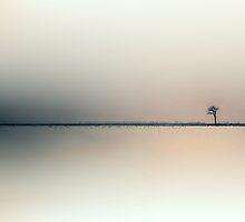SOLO by Gisele Bedard