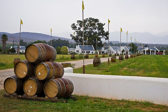 Wine Barrels and Vineyard Farmhouse by RatManDude