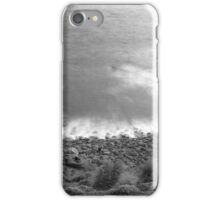 An Expectation of Seeing Dinosaurs iPhone Case/Skin