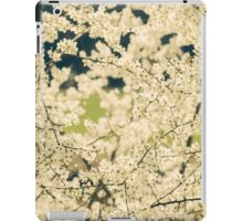 Springtime White Blossoms iPad Case/Skin