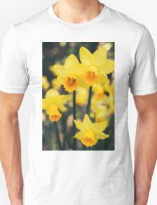 Yellow Daffodil Flowers Unisex T-Shirt