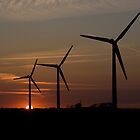 Windmills at sunset. by imagic