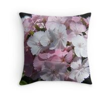 Pretty Pink Sweet William... Throw Pillow