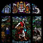 Where stained glass is found - Wagga StJ9 by Anthony Ogle