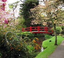 Japenese Gardens by John Quinn
