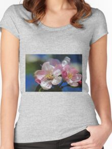 Apple Blossoms Women's Fitted Scoop T-Shirt