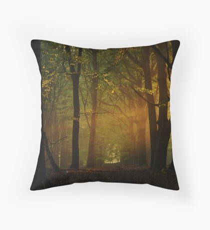 In the hazy morning forest again. Throw Pillow