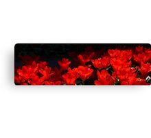Skagit Valley Tulip Festival Panorama Four Canvas Print