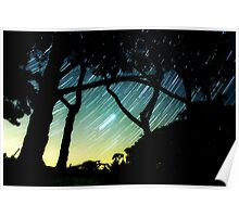 Trees and stars Poster