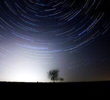 Tree and stars by Mark Hobbs