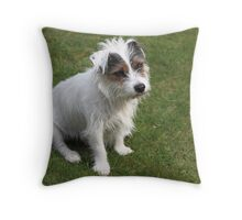 Bertie with his winsome look Throw Pillow