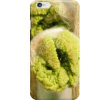 Fiddlehead of Cinnamon Fern 1 iPhone Case/Skin